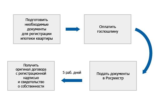 этапы процедуры